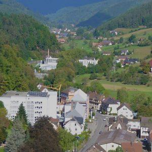 Neue Heimat Schwarzwald