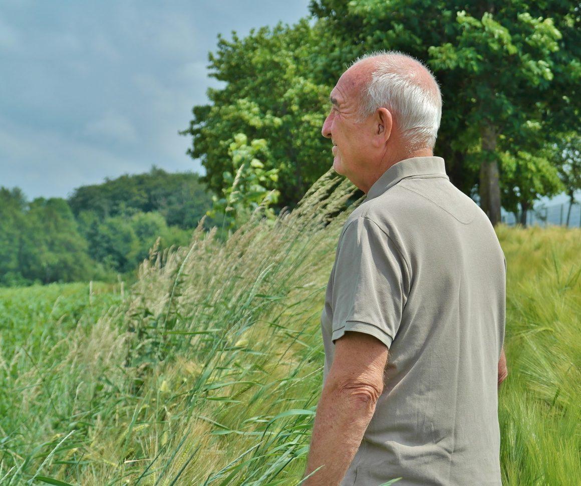 ADENTRO! – Aktivierung und Training für Senioren