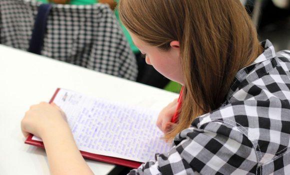 Lengua y cultura como factores de éxito: IMPULSO