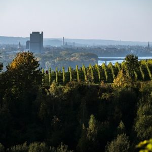 Mein neues Leben in Deutschland – Neue Heimat Bonn/Rhein-Sieg