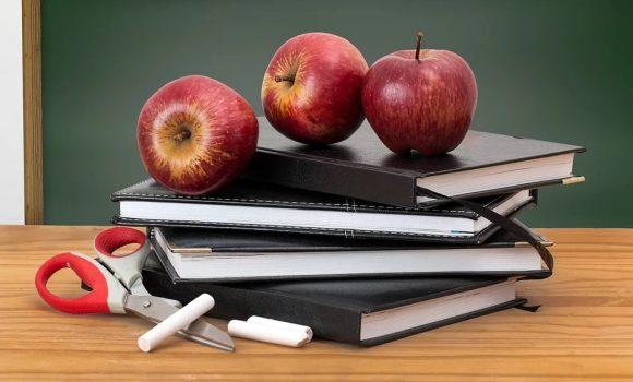 Das deutsche Schulsystem: Fallen, Irrwege, Erfolgswege